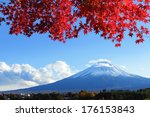Mountain Fuji With Maple Tree