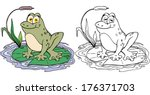 Vector Illustration  Frog...