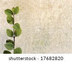 lovely brown background image... | Shutterstock . vector #17682820