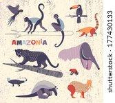 Set Of Amazonian Animals