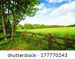 Fence In The Green Field Under...