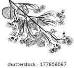 linden   Shutterstock . vector #177856067