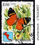 Small photo of NICARAGUA - CIRCA 1982: a stamp printed in Nicaragua shows Callizona Acesta, Butterfly, circa 1982