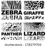 animal skin pattern  set of... | Shutterstock .eps vector #178279703