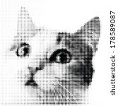 dotted cat watching   Shutterstock .eps vector #178589087