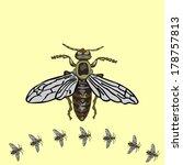fly | Shutterstock .eps vector #178757813