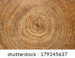Cross Section Log Texture
