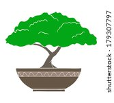 colorful bonsai tree isolated... | Shutterstock . vector #179307797