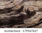 rotten driftwood | Shutterstock . vector #179567627