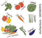 vector illustration vegetables... | Shutterstock .eps vector #180380993