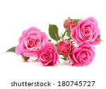 Pink Rose Flower Bouquet...