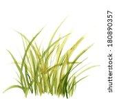 green grass. floral background.  | Shutterstock . vector #180890357