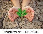 hands holding tree growing on... | Shutterstock . vector #181274687