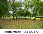 park with many leaves in the... | Shutterstock . vector #181422173