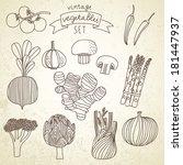 tasty vegetables in vector set  ... | Shutterstock .eps vector #181447937