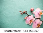 Pink Orchid A Wooden Background - Fine Art prints