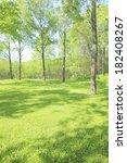 trees of various fresh green | Shutterstock . vector #182408267