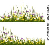wild flower meadow  isolated on ... | Shutterstock .eps vector #182598353