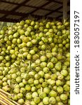 the fresh coconuts from the... | Shutterstock . vector #183057197