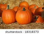 pumpkins on straw in fall | Shutterstock . vector #18318373