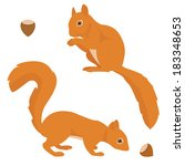 two vector squirrels isolated... | Shutterstock .eps vector #183348653