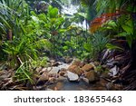 jungle landscape with waterfall  | Shutterstock . vector #183655463