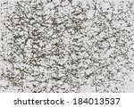 vector worn wrinkled paper...