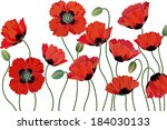 red poppies isolated on white... | Shutterstock .eps vector #184030133