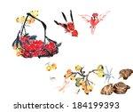 fruit basket with litchi  taro  ... | Shutterstock . vector #184199393