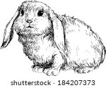 hand drawn rabbit | Shutterstock . vector #184207373