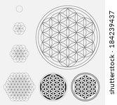 flower of life  vector. | Shutterstock .eps vector #184239437