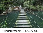 Hanging Bridge In Forest When...