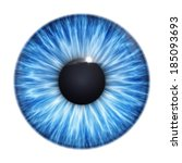 An Image Of A Nice Blue Eye...