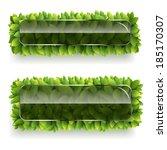 vector banner of green leaves... | Shutterstock .eps vector #185170307