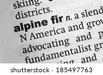 Small photo of Dictionary definition of the word Alpine Fir