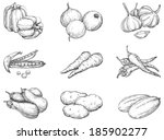 vegetables. vector set 1 of...