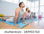 fitness group doing cobra pose... | Shutterstock . vector #185902763