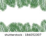 palm leaves on white background. | Shutterstock . vector #186052307