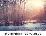 Winter Sunset On The Marsh