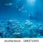 Sea Or Ocean Underwater With...
