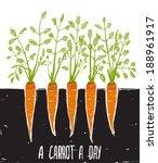 growing carrots scratchy... | Shutterstock .eps vector #188961917