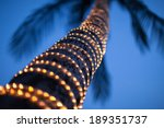 Lighted Coconut  By Small Led...
