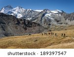 group of walkers in val d... | Shutterstock . vector #189397547