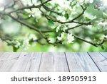 flowers background | Shutterstock . vector #189505913