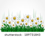 floral background with daisy ... | Shutterstock .eps vector #189731843