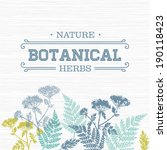 botanical composition | Shutterstock .eps vector #190118423