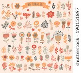 hand drawn vintage floral... | Shutterstock .eps vector #190151897