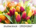 Beautiful Bouquet Of Tulips In...