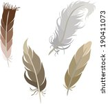 various types of feathers  | Shutterstock .eps vector #190411073