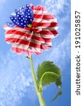 Usa Flag On The Order Of Flowe...